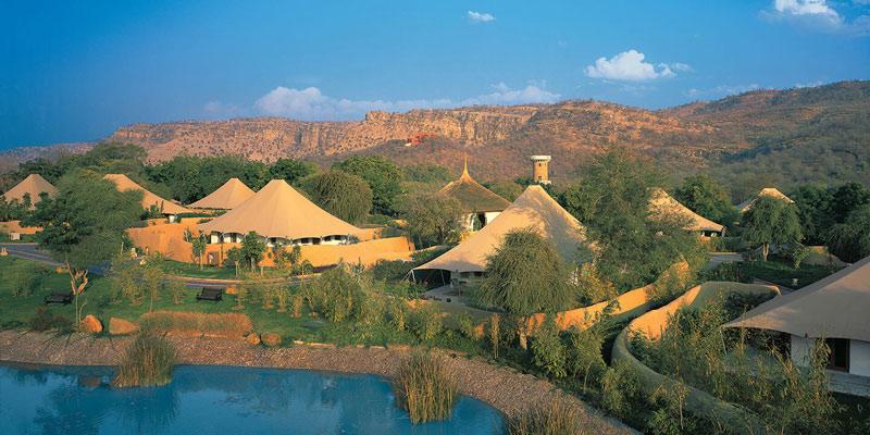 10 Thrilling Experiences at Premium Jungle Resorts