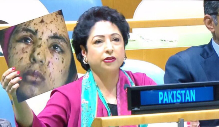 Read more about the article Pakistan uses fake image to attack India; loses face at UNGA