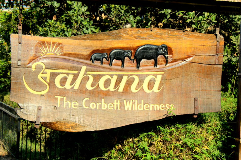 Read more about the article Aahana – The Corbett Wilderness is the perfect getaway to wellness and rejuvenation