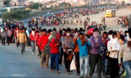Why are migrant workers so desperate to go back home?